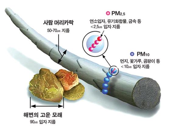 미세먼지 크기 비교 그림입니다. 사람 머리카락 지름: 50~70마이크로미터 초미세먼지(PM2.5): 연소입자, 유기화합물, 금속 등  2.5마이크로미터 미세먼지(PM10): 먼지, 꽃가루, 곰팡이 등  10마이크로미터 해변의 고운 모래: 90마이크로미터